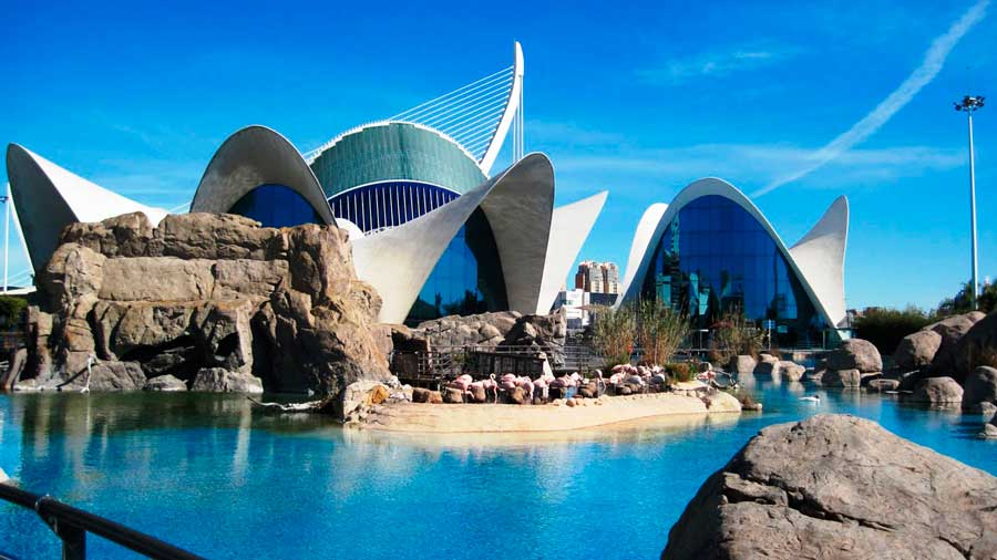 valencia-attractions-urban-youth-hostel