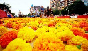 Batalla de las flores